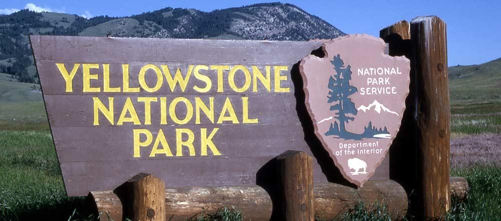 Ywllowstone Park 1000x441 - Viaggio in California e parchi - da San Francisco a Los Angeles - 9 gg