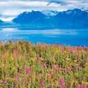 Alalska paesaggi 127x126 - Come programmare un viaggio in Alaska