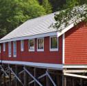 Telegraph Cove 127x126 - Vancouver Island: il villaggio tipico di Telegraph Cove