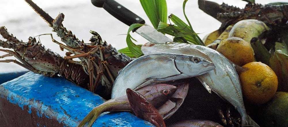 pesca-sportiva-in-Costa-Rica