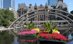 viaggio a Toronto