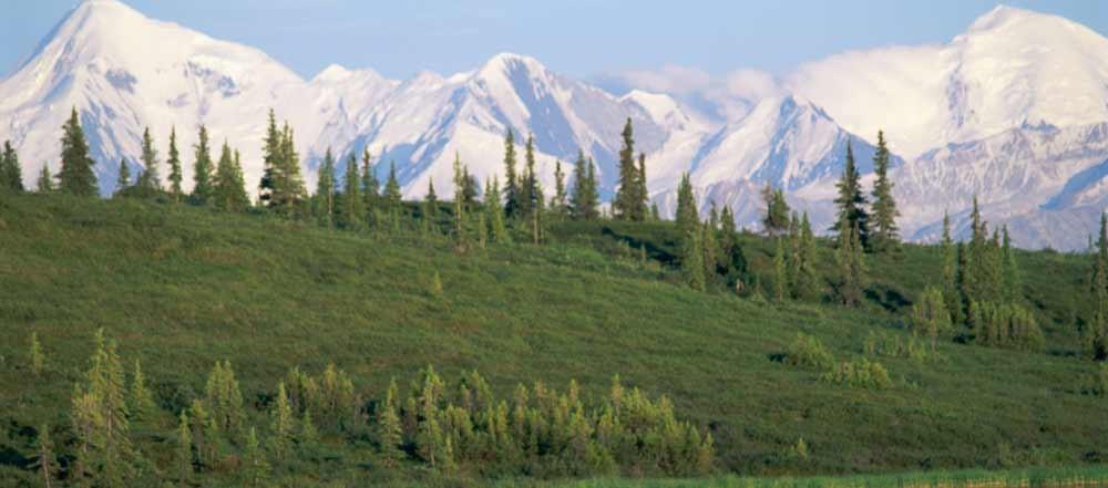 Denali-National-Park-viaggio-Alaska