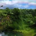 Hawaii paesaggi mozzafiato 127x126 - Le Hawaii in elicottero: lo spettacolo è garantito