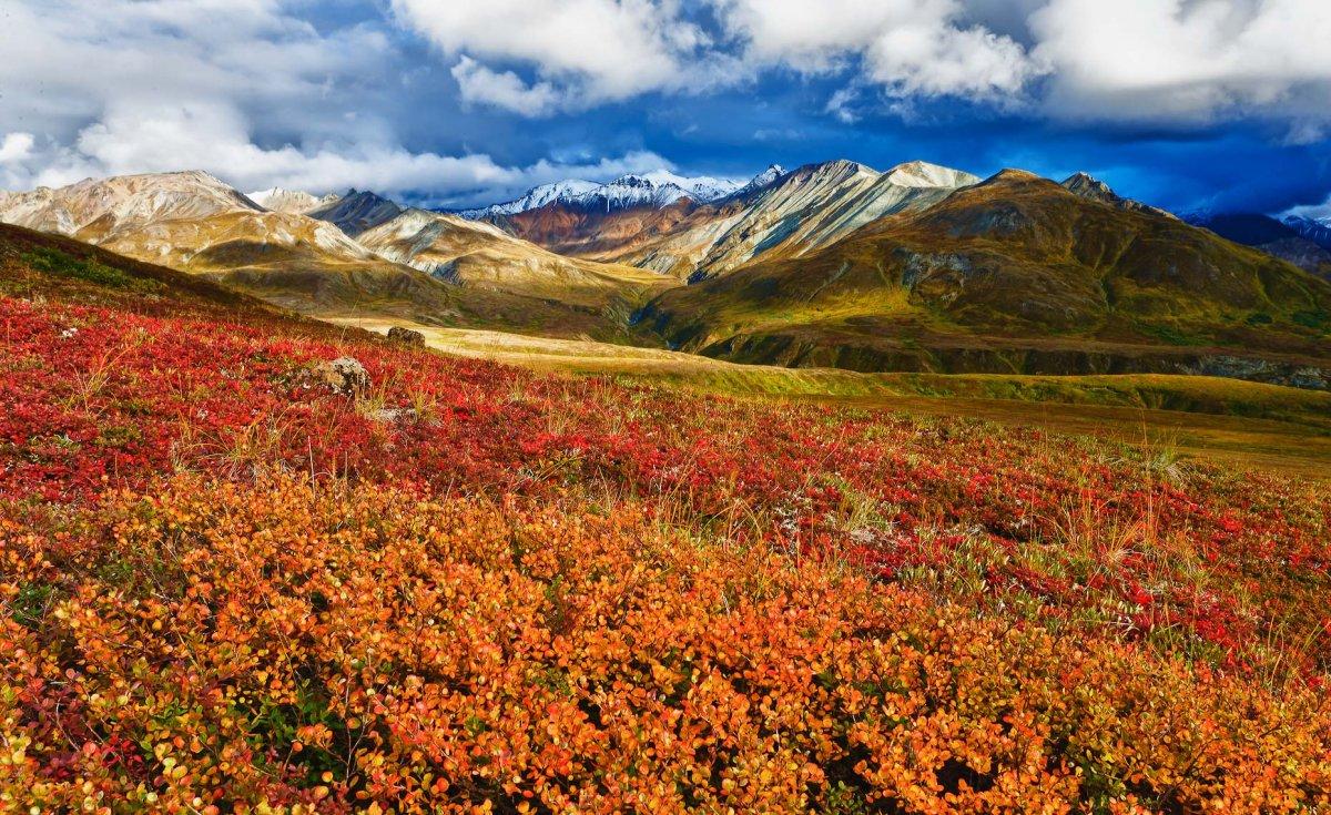 30 - Il clima in Alaska: curiosità