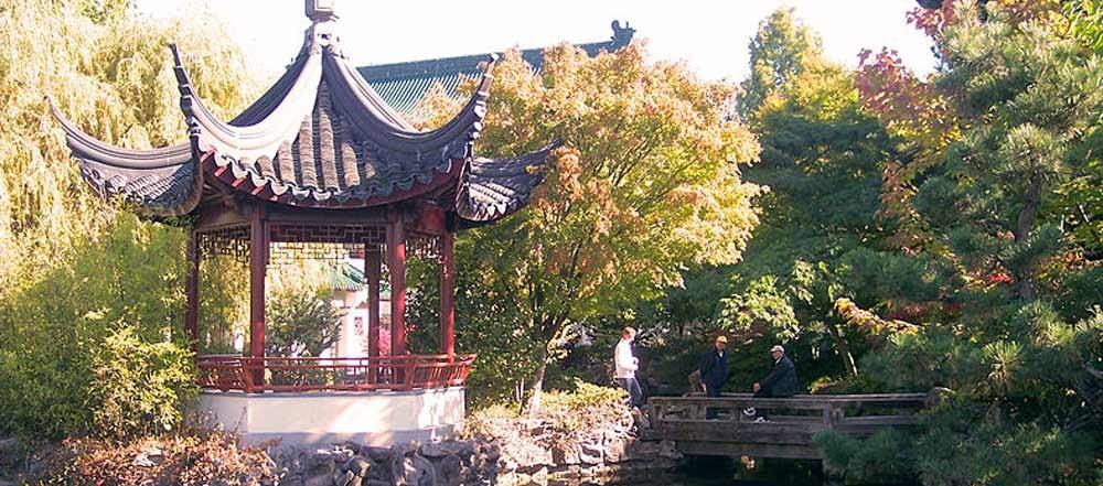 Giardini fioriti a vancouver ecco una valida alternativa for Giardino cinese