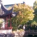 Giardino Cinese Vancouver 127x126 - Giardini fioriti da visitare a Vancouver: il Sun Yat-Sen Garden