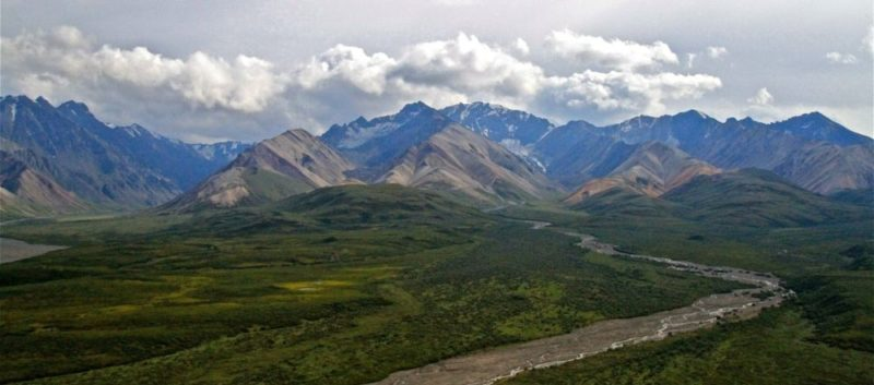 IMG 2497 800x353 - Alaska Tour : Denali National Park