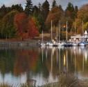 Stanley Park 127x126 - Vancouver: una giornata allo Stanley Park