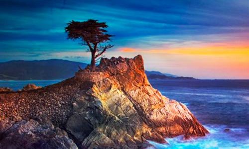 CALIFORNIA SPIAGGE E FORESTE