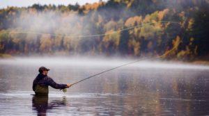 pesca al salmone in Canada 300x167 - Fishing trips in Canada