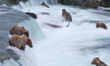 TOUR DELUXE IN ALASKA