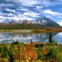 7mjkh 127x126 - Viaggio con Crociera Alaska - Da Vancouver Island al Denali -